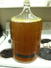 Passion Fruit Wheat in Secondary
